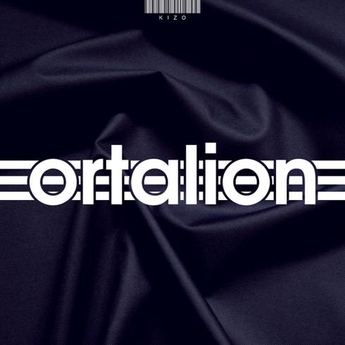Płyta Cd Kizo - Ortalion